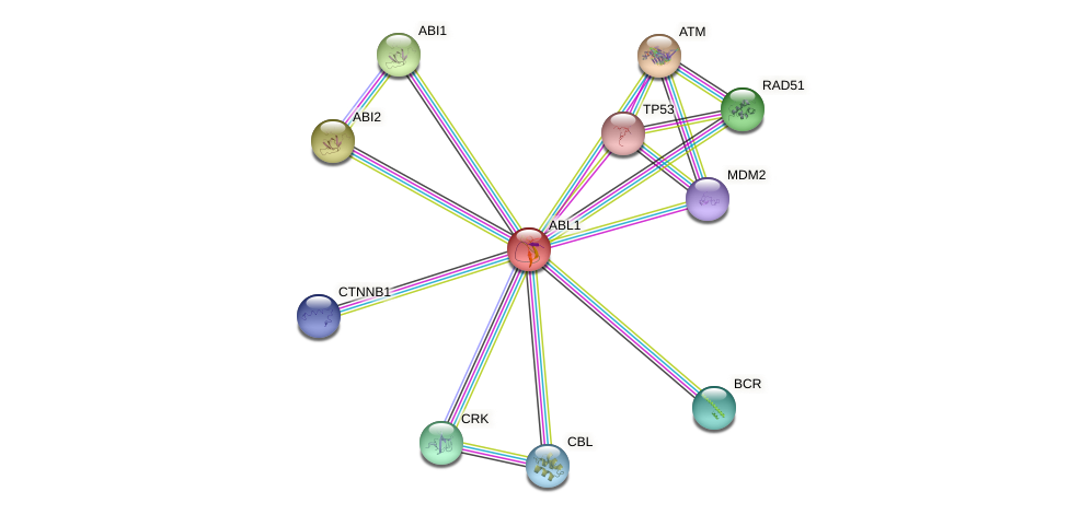 Protein-Protein network diagram for ABL1