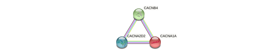 Protein-Protein network diagram for CACNA1A