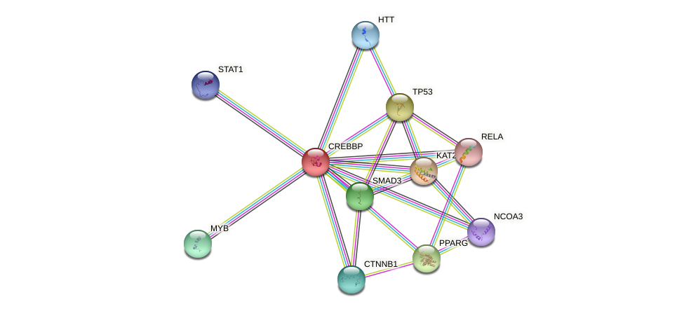 Protein-Protein network diagram for CREBBP