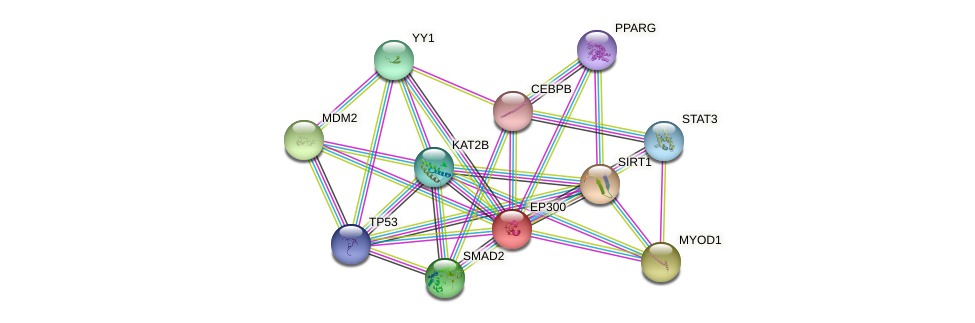 Protein-Protein network diagram for EP300
