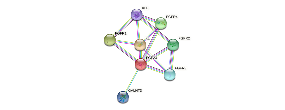 Protein-Protein network diagram for FGF23
