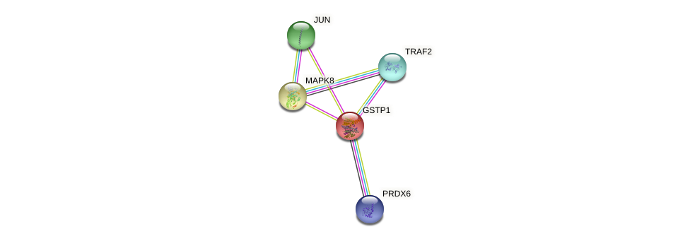 Protein-Protein network diagram for GSTP1