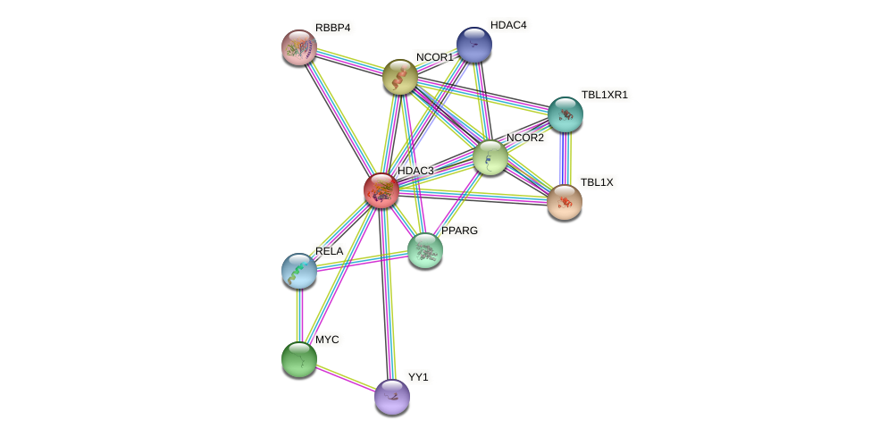 Protein-Protein network diagram for HDAC3