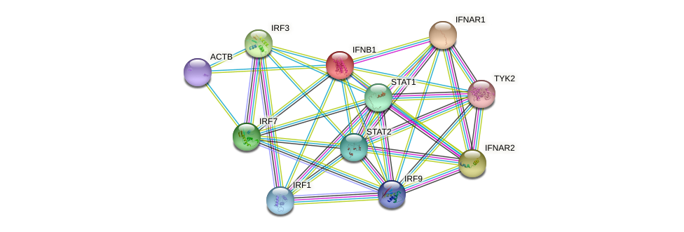 Protein-Protein network diagram for IFNB1