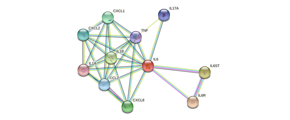 Protein-Protein network diagram for IL6