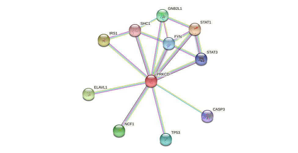Protein-Protein network diagram for PRKCD
