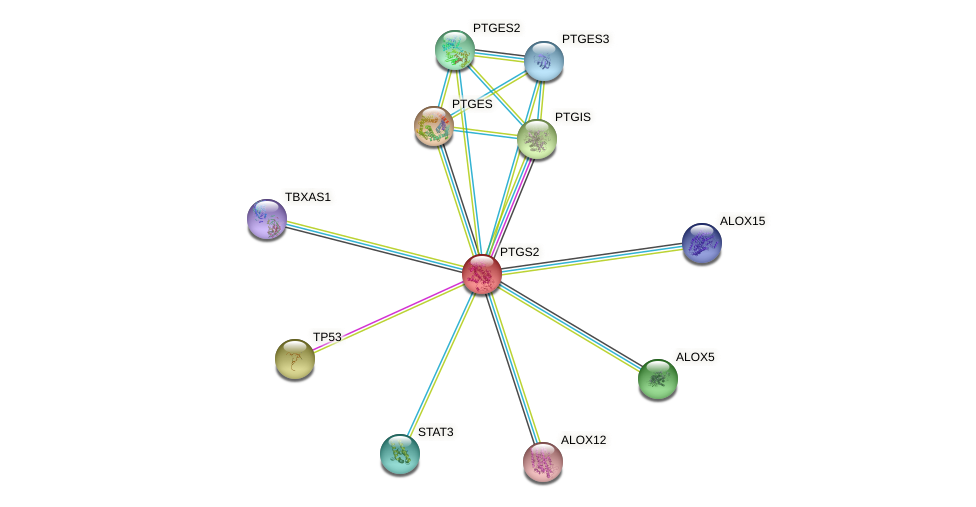 Protein-Protein network diagram for PTGS2