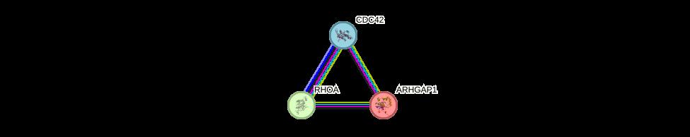 Protein-Protein network diagram for ARHGAP1