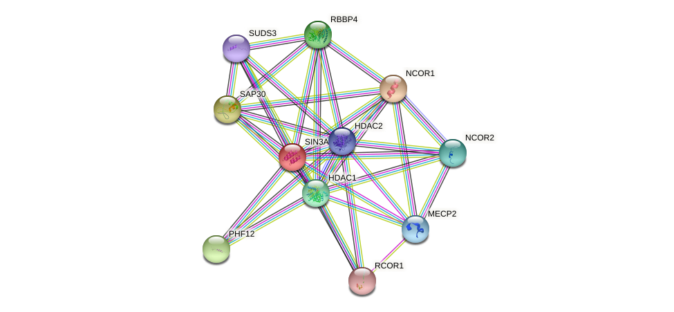Protein-Protein network diagram for SIN3A