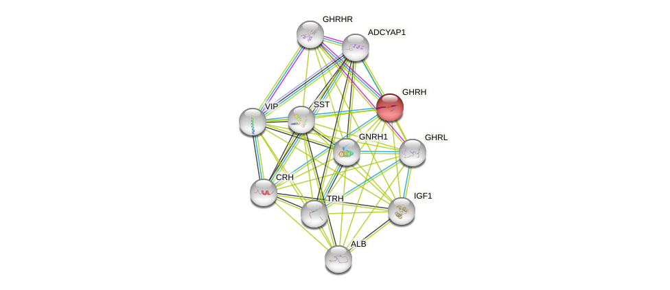 Protein-Protein network diagram for GHRH