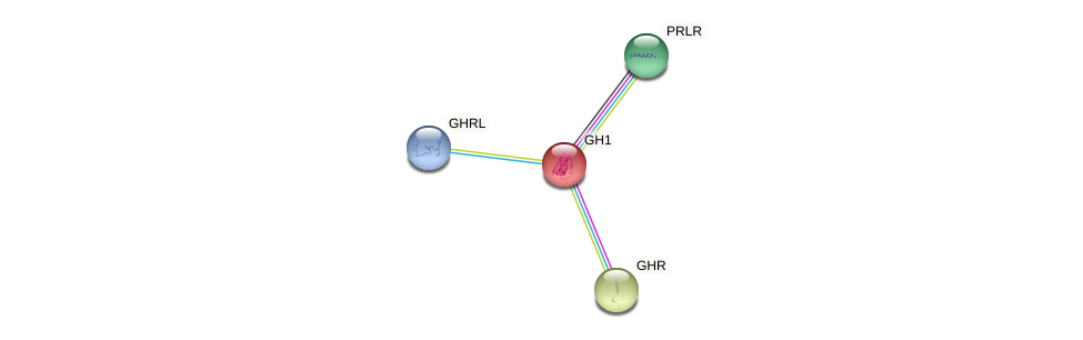 Protein-Protein network diagram for GH1
