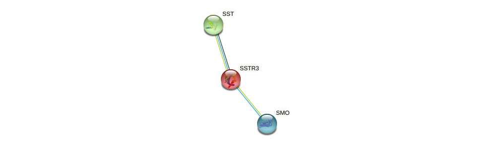 Protein-Protein network diagram for SSTR3