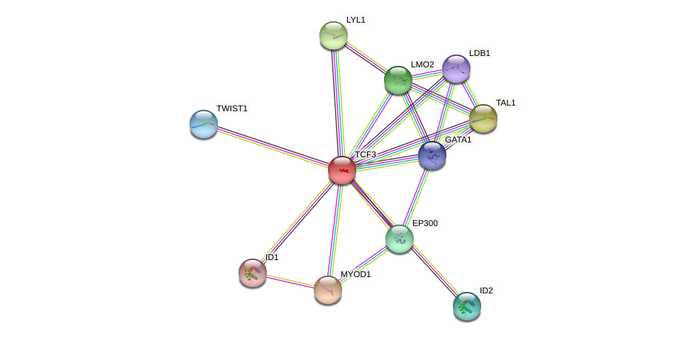Protein-Protein network diagram for TCF3