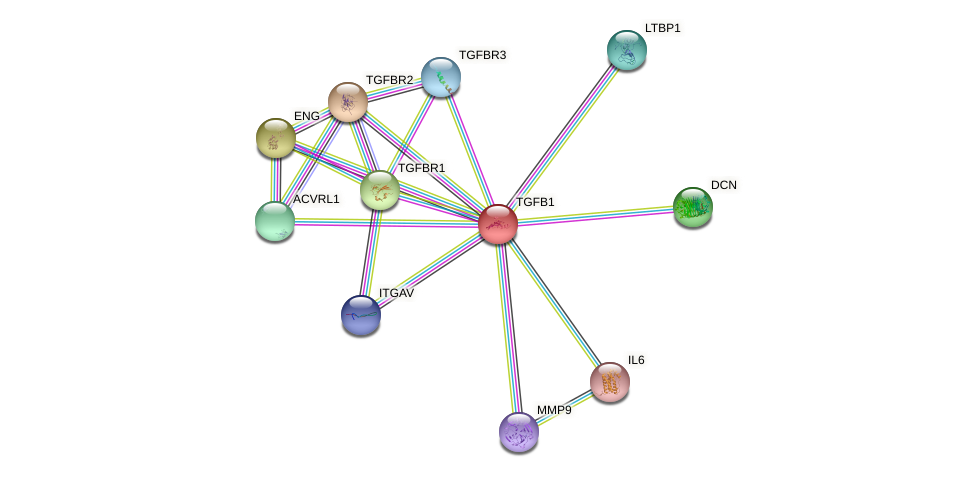Protein-Protein network diagram for TGFB1