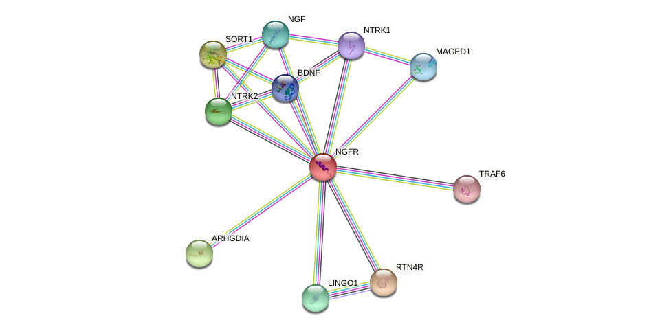 Protein-Protein network diagram for NGFR