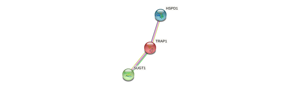 Protein-Protein network diagram for TRAP1