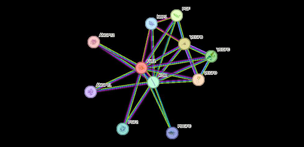 Protein-Protein network diagram for FLT1