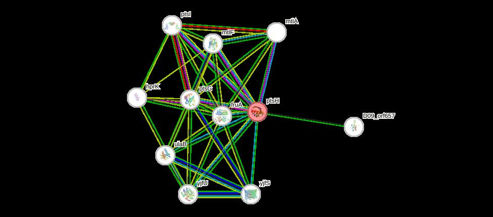 STRING of Mpn053