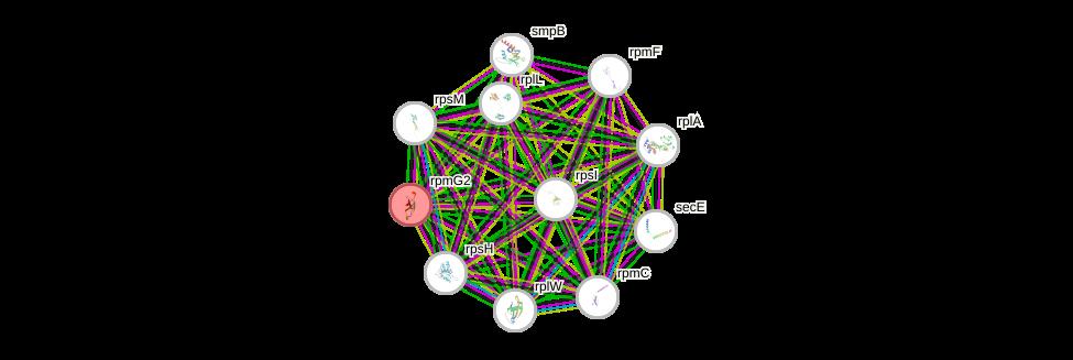 STRING of Mpn069