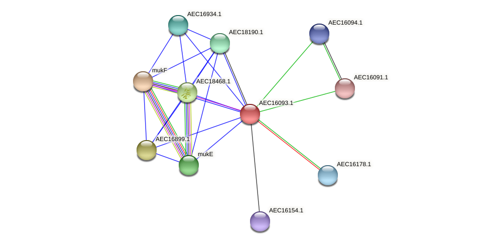 UMN179_00056 protein (Gallibacterium anatis) - STRING interaction network
