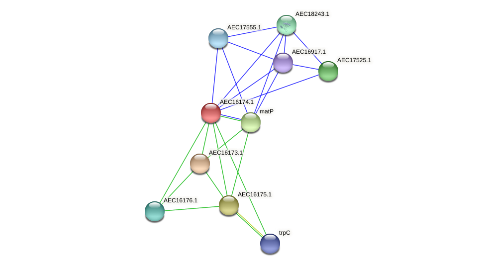 UMN179_00137 protein (Gallibacterium anatis) - STRING interaction network