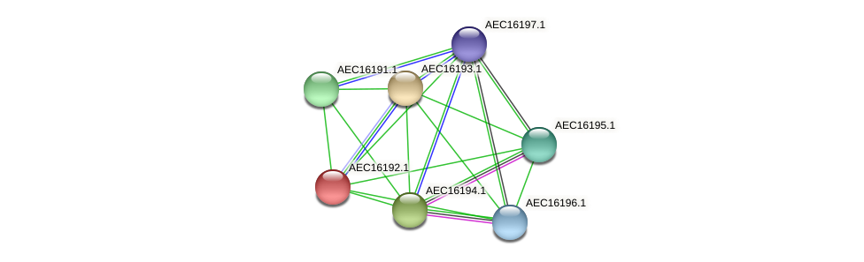 UMN179_00155 protein (Gallibacterium anatis) - STRING interaction network