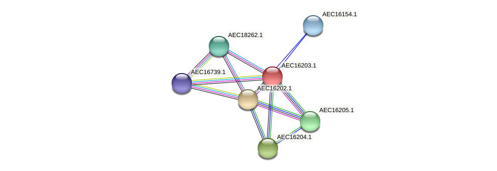 UMN179_00166 protein (Gallibacterium anatis) - STRING interaction network