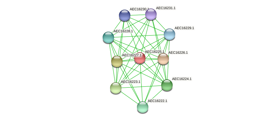 UMN179_00188 protein (Gallibacterium anatis) - STRING interaction network