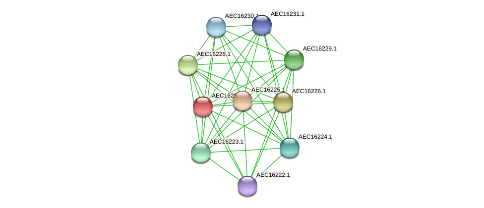 UMN179_00190 protein (Gallibacterium anatis) - STRING interaction network