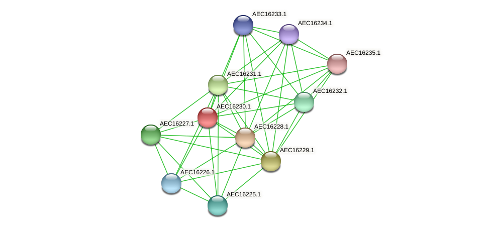 UMN179_00193 protein (Gallibacterium anatis) - STRING interaction network