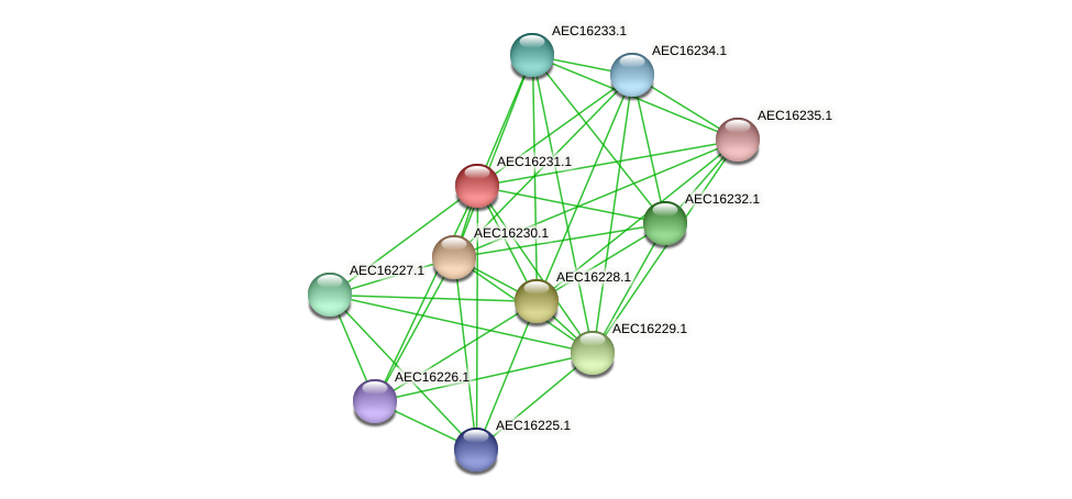 UMN179_00194 protein (Gallibacterium anatis) - STRING interaction network