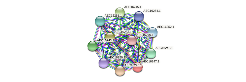 UMN179_00210 protein (Gallibacterium anatis) - STRING interaction network
