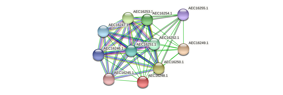 UMN179_00211 protein (Gallibacterium anatis) - STRING interaction network