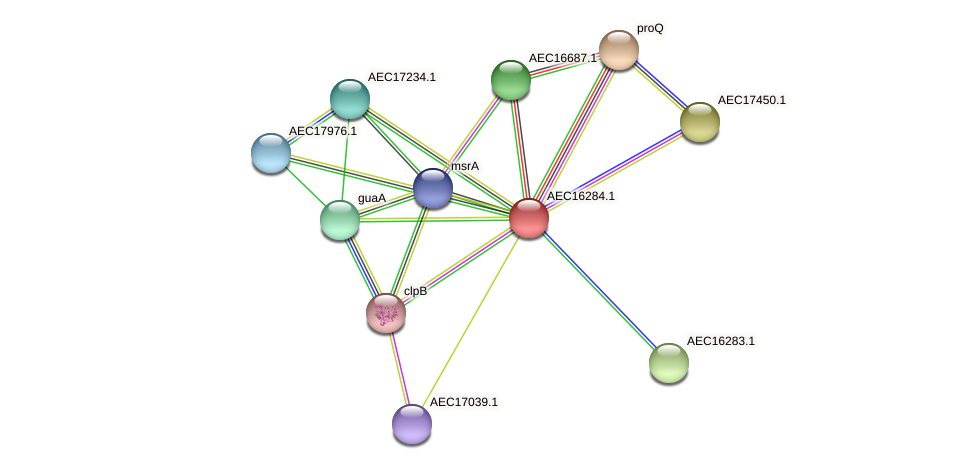 UMN179_00247 protein (Gallibacterium anatis) - STRING interaction network