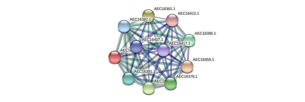 UMN179_00323 protein (Gallibacterium anatis) - STRING interaction network