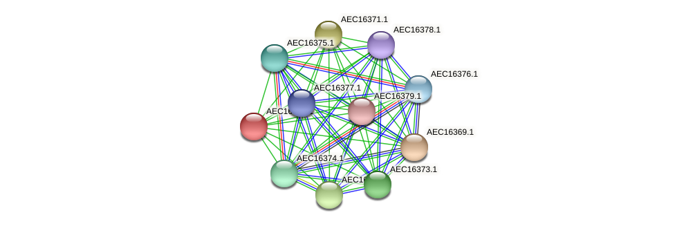 UMN179_00333 protein (Gallibacterium anatis) - STRING interaction network