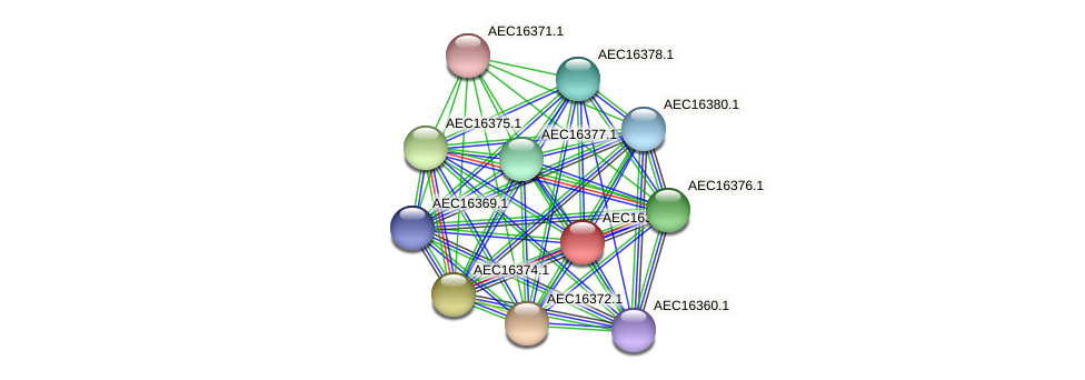 UMN179_00336 protein (Gallibacterium anatis) - STRING interaction network