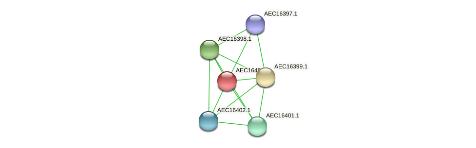UMN179_00363 protein (Gallibacterium anatis) - STRING interaction network