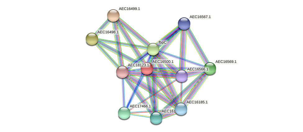 UMN179_00464 protein (Gallibacterium anatis) - STRING interaction network