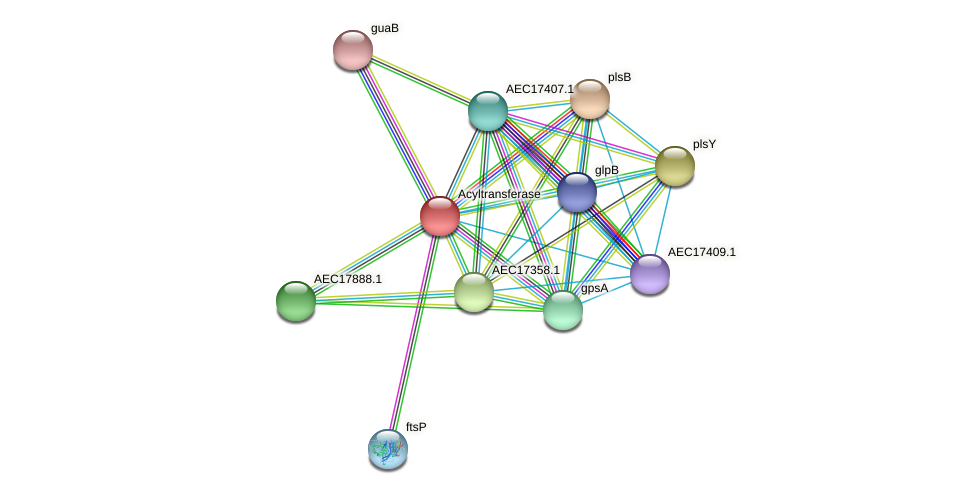 UMN179_00610 protein (Gallibacterium anatis) - STRING interaction network