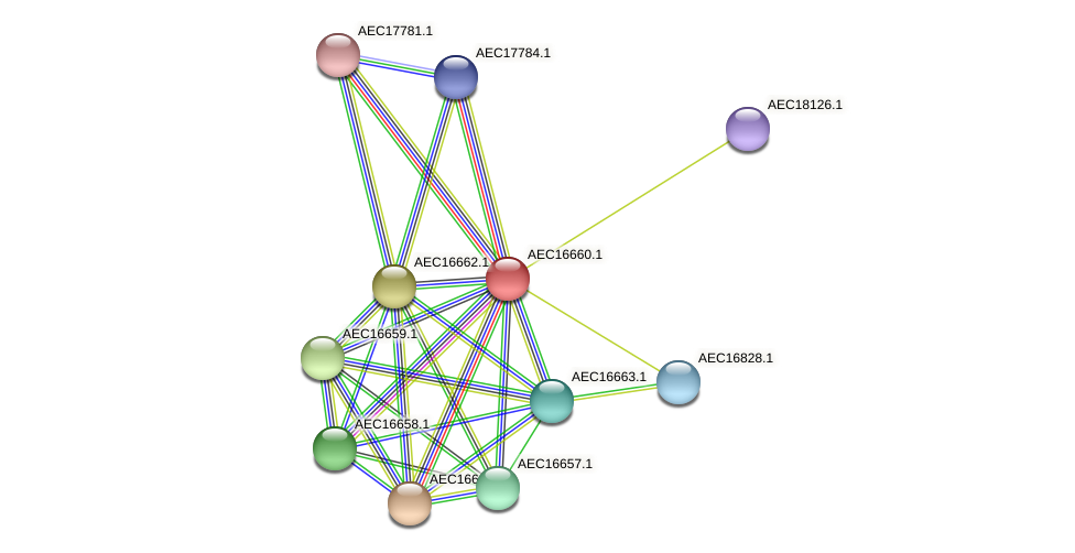 UMN179_00626 protein (Gallibacterium anatis) - STRING interaction network