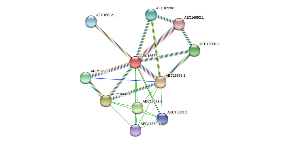 UMN179_00643 protein (Gallibacterium anatis) - STRING interaction network