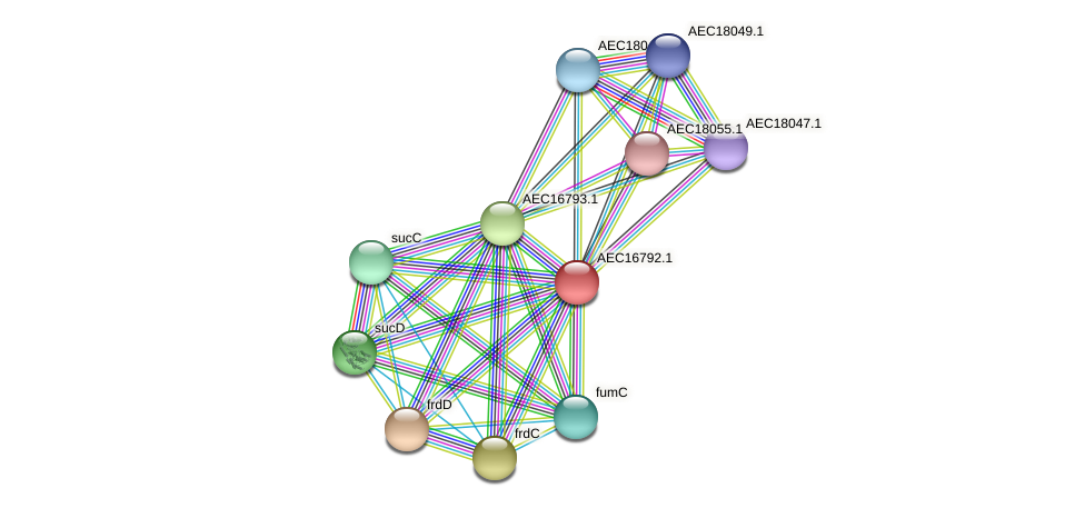UMN179_00761 protein (Gallibacterium anatis) - STRING interaction network