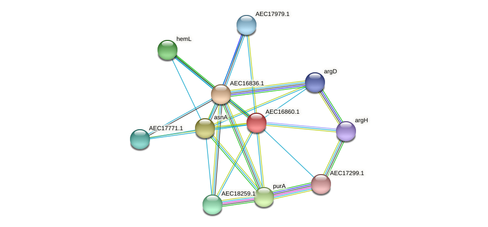 UMN179_00830 protein (Gallibacterium anatis) - STRING interaction network