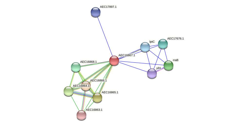 UMN179_00837 protein (Gallibacterium anatis) - STRING interaction network