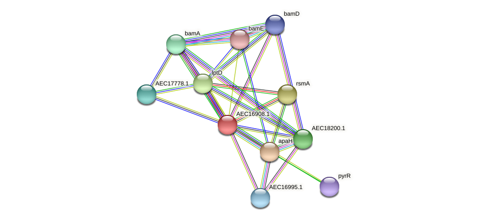 UMN179_00878 protein (Gallibacterium anatis) - STRING interaction network