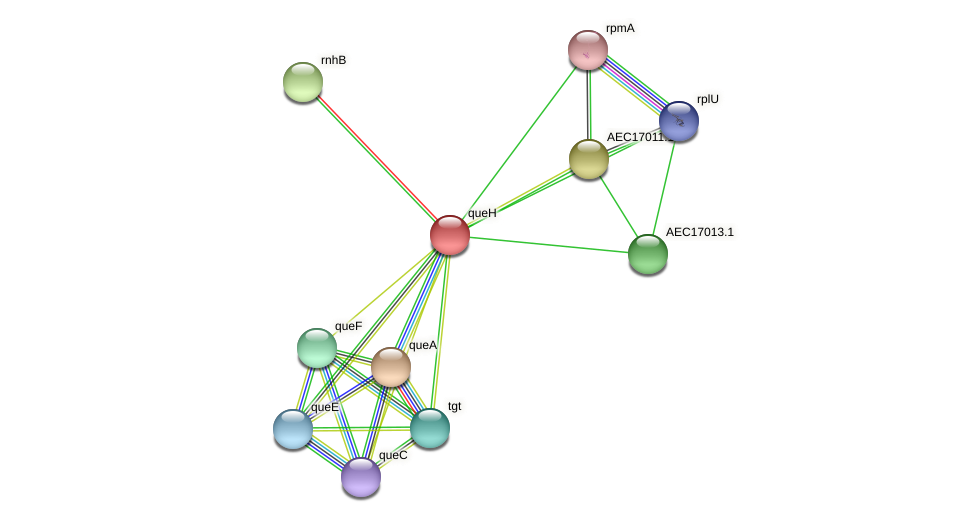 UMN179_00984 protein (Gallibacterium anatis) - STRING interaction network
