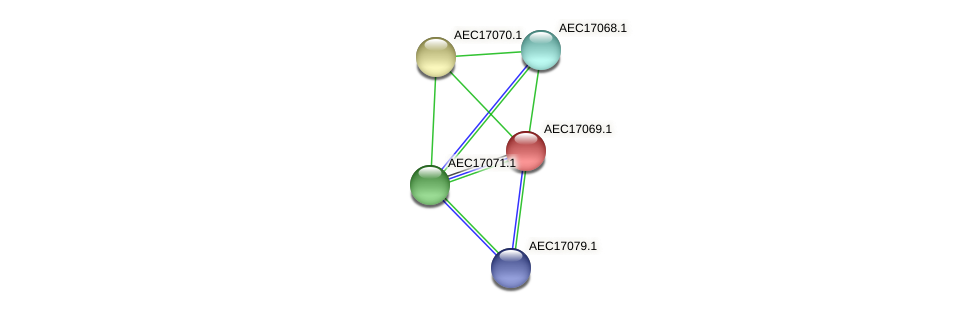 UMN179_01041 protein (Gallibacterium anatis) - STRING interaction network