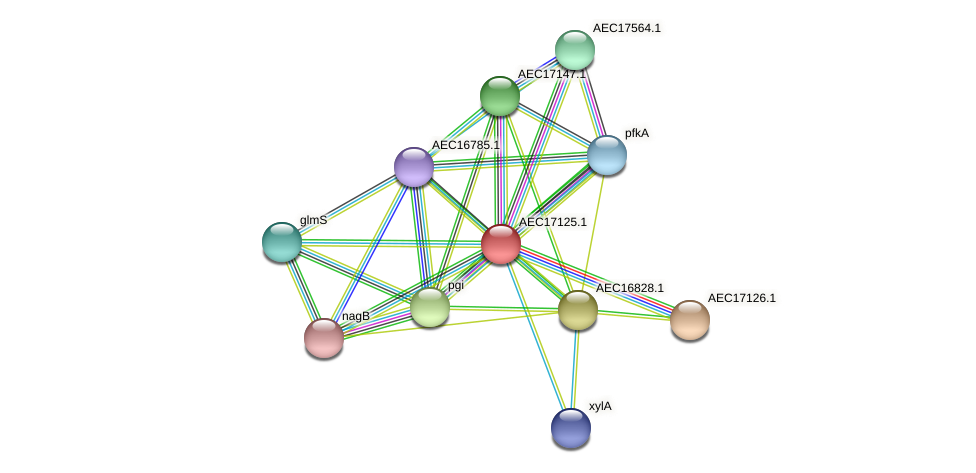 UMN179_01100 protein (Gallibacterium anatis) - STRING interaction network