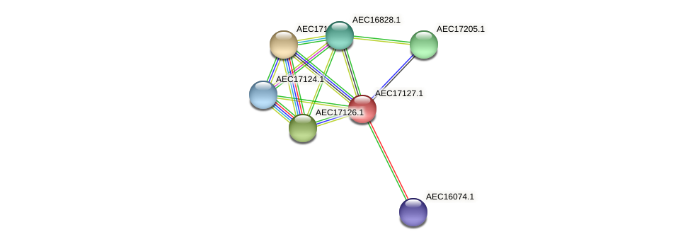 UMN179_01102 protein (Gallibacterium anatis) - STRING interaction network